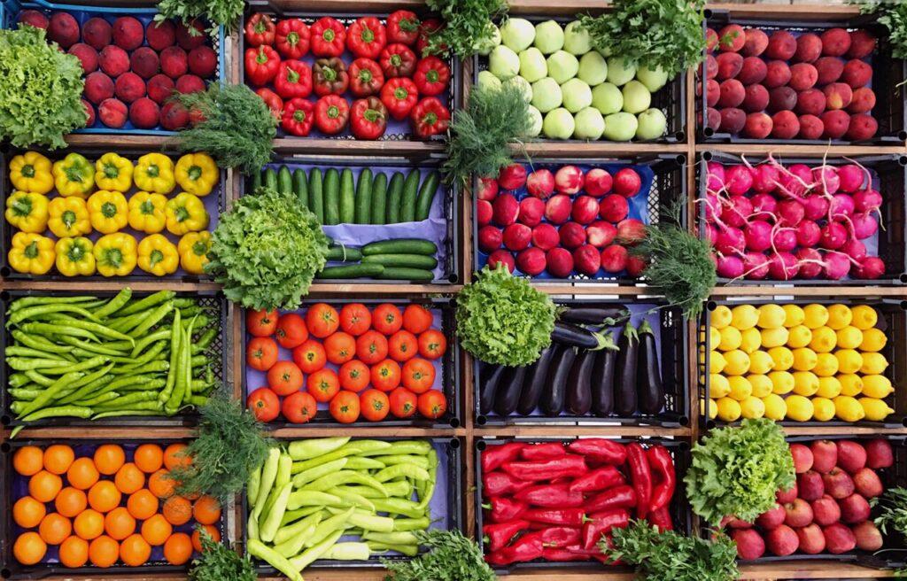رژیم غذایی در میگرن